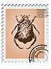Vector clipart: stamp with picture of beetle