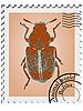 Stempel mit einem Käfer