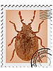 Stempel mit einem Bild eines Insekts