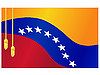 flag of Venezuela and tassels