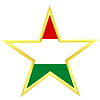 Gold star with flag of Hungary | 向量插图