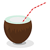 Coconut and straw for cocktails | Stock Vector Graphics