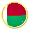 Vector clipart: button with flag Madagasca