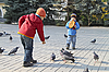 Photo 300 DPI: Children fed the pigeons in autumn park