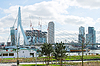 Park and embankment near bridge Erasmus of Rotterdam | Stock Foto