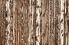 ID 3172527 | Rich Wood Background | High resolution stock photo | CLIPARTO