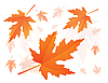 Vector clipart: falling maple leaves