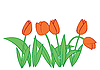 Vector clipart: Tulips