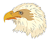 Vector clipart: Eagle head