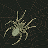 Vector clipart: Spider on Web
