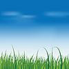 свежей зеленой траве над голубым небом