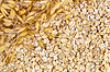 Photo 300 DPI: The texture of oatmeal with oat stalks left