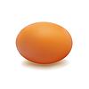 Egg Brown