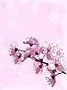 Vector clipart: Cherry blossom background