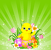 Vector clipart: Beautiful Easter chick