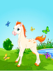 Vector clipart: Horse foal in the meadow