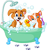 Dog and Cat having bath