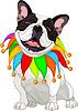 French bulldog wearing colorful collar