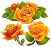 Vector clipart: Orange roses set