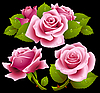 Vector clipart: Pink roses set