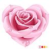 Розовая роза в форме сердца
