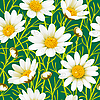 Vector clipart: Camomile seamless background