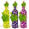 Weinflaschen aus Trauben
