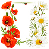 Vector clipart: Poppy and Camomile