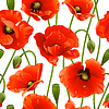 Vector clipart: Seamless background: poppies