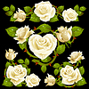 Vector clipart: White Rose design elements