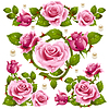 Vector clipart: Pink Rose design elements