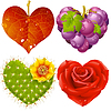 Vector clipart: Shape of heart set 3. Fall leaf, grapes, cactus