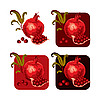 Vector clipart: Pomegranate