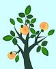 Vector clipart: Fruit branch