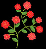 Red roses bush illustration