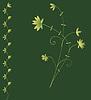 Темно-зеленый фон с цветочным декором