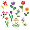 Decorative flowers set with foliage