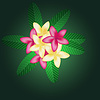 Vector clipart: Frangipani flowers background