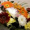 Celebratory bunch of flowers | Stock Foto