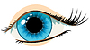 blue woman`s eye