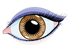 Vector clipart: Brown eyes with makeup