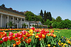 Spa house Baden-Baden with tulips | Stock Foto