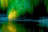 Light show in the floodplains | Stock Foto