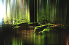 ID 3227347 | Magic forest | High resolution stock photo | CLIPARTO
