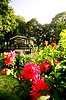 Park of dahlia in Baden-Baden with pavilion | Stock Foto