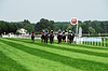 Photo 300 DPI: Finish at the horse races in Iffezheim