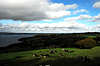 아일랜드에서 가축 방목 | Stock Foto