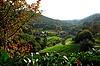 Sasbachwalden in Schwarzwald | Stock Foto