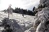 Downhill skier in Schwarzwald | Stock Foto