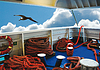 Photo 300 DPI: Mooring ropes on ferry